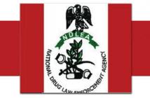 NDLEA Recruitment 2019